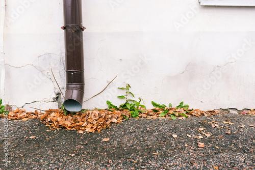 Fotografia, Obraz Drainpipe on a white wall of a house