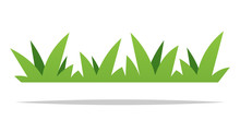Green Grass Vector Isolated De...