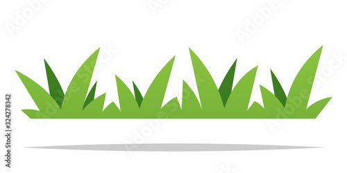Obraz Green grass vector isolated design - fototapety do salonu