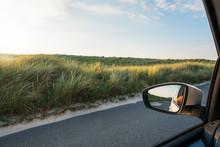 Car Window View With Grassy Du...