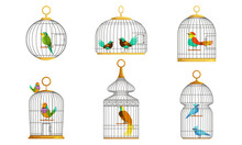 Exotic Birds In Cages Collection, Cute Colorful Birdies Vector Illustration On White Background