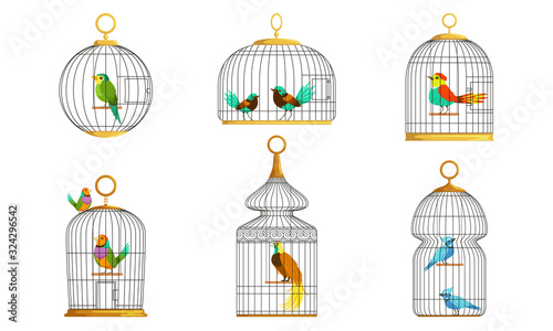 Exotic Birds in Cages Collection, Cute Colorful Birdies Vector Illustration on W Wallpaper Mural