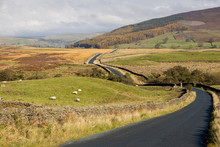 Winding Road In The Yorkshire Dales