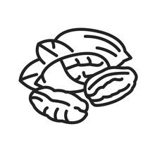 Pecan Nut Black Line Icon. Nut...