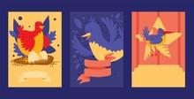 Bird Card Design Vector Illust...