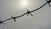 Barbed Wire On A Gray Sky Back...