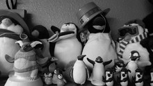 Resting Penguins (black And Wh...