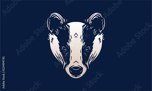 Tableau sur Toile Badger on dark background