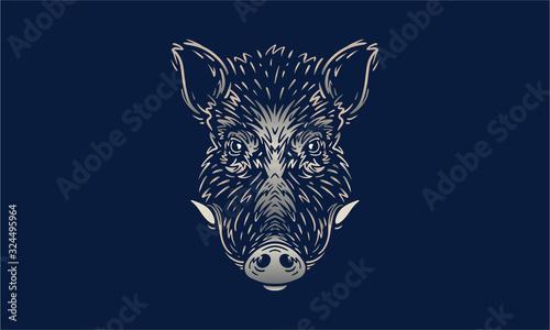 Tableau sur Toile Wild Boar on dark background