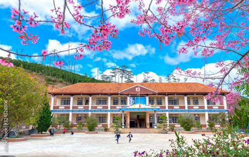 Fényképezés A landscape of an upland primary school in spring morning with cherry blossom tr