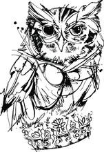 Wild Owl. Graphic Hand Drawn Illustration