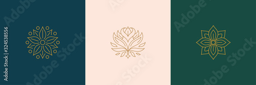 Tablou Canvas Vector line minimal decoration design elements set - rose flower and botanical l