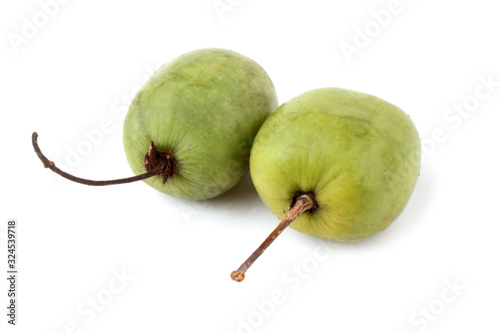Little kiwi isolated on white. Actinidia kolomikta Canvas Print