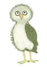 Funny Standing Baby Owl Grey C...