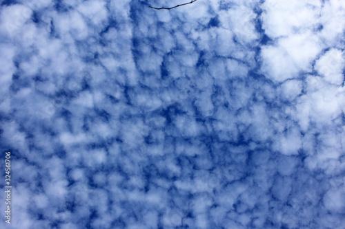 Altocumulus clouds background Canvas Print
