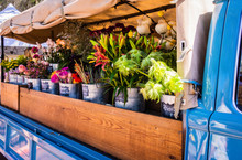 An Open Truck With Buckets Lined Up Full Of Flowers