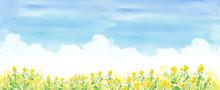 青空と菜の花畑 水彩...