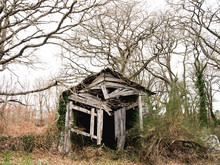Abandoned Old Shed On A Field