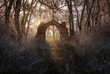 Decayed Gate Of An Abandoned C...