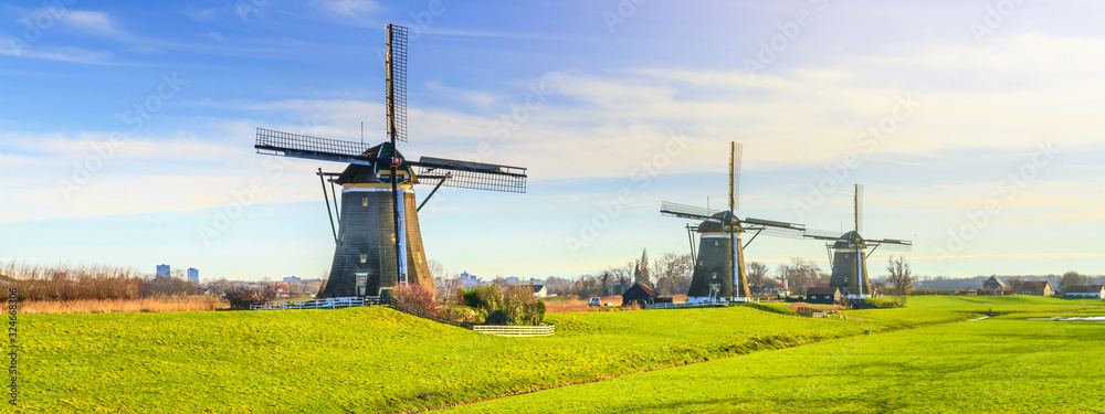 Fototapeta Rural landscape - view of green meadow on background of the mills on a sunny day, the Netherlands
