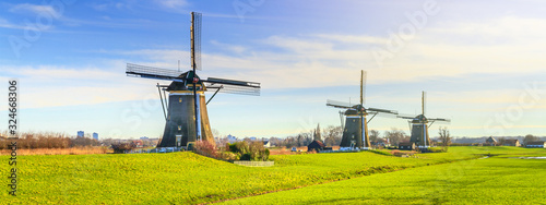 Obraz Rural landscape - view of green meadow on background of the mills on a sunny day, the Netherlands - fototapety do salonu
