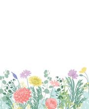 たくさんの花と白い背景