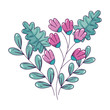 branch with flowers and leafs isolated icon vector illustration design