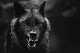 Fototapeta Zwierzęta - Greyscale closeup shot of an angry wolf with a blurred background