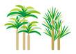 植物グラフィックパターン