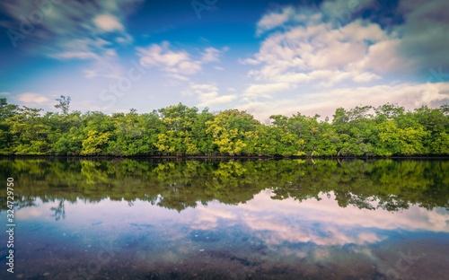 Fototapeta aquatic river lake sky water clouds reflection nature summer landscape florida blue green trees forest beautiful scene pond field panoramic usa obraz na płótnie