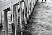Closeup Of Barnacles Growing At The Waterline On The Concrete Pilings Of The Huntington Beach Pier.