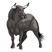 Black Bull. Isolated Vector Illustration On White Background