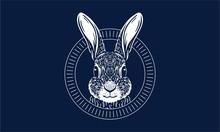 Rabbit On Dark Background