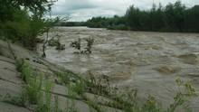 Rough Muddy Stream Of A Mounta...