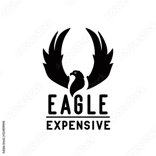 eagle with raised wings for hardcore metalcore band Canvas Print