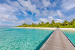 Tropical beach, Maldives. Jetty pathway into tranquil paradise island. Palm trees, white sand and blue sea, perfect summer vacation landscape or holiday banner. Beautiful tourism destination, Maldives