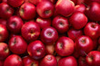 canvas print picture - Full Frame Shot Of Red Apples