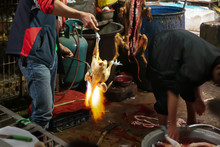 Chinese Butcher Burning Chicke...