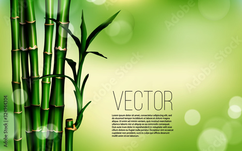 Slika na platnu Chinese or japanese bamboo grass oriental wallpaper stock illustration
