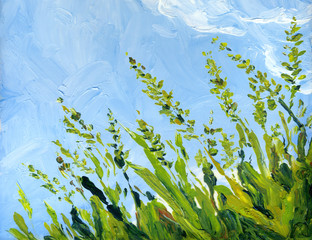 Oil painting. Blue sky over grass in the field