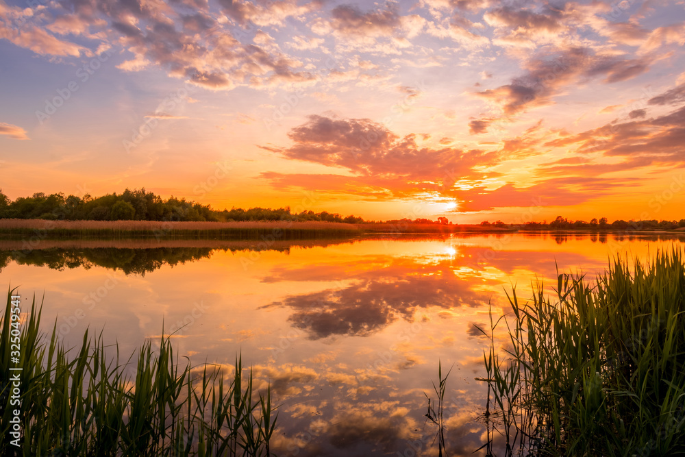 Obraz Scenic view of beautiful sunset or sunrise above the pond or lake at spring or early summer evening with cloudy sky background and reed grass at foreground. Landscape. Water reflection. fototapeta, plakat