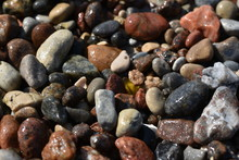 Colorful Wet Beach Pebble Back...