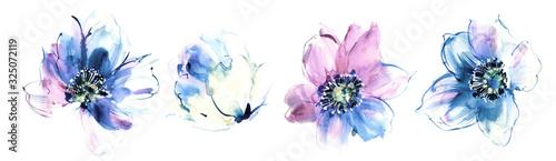 Obraz Flowers watercolor illustration.Manual composition.Big Set watercolor elements. - fototapety do salonu