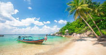 Tropical Beach With Coconut Pa...