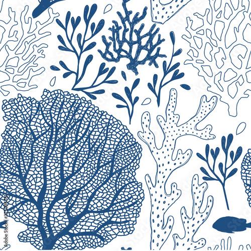 Seaweed sketchy vector seamless pattern Canvas Print