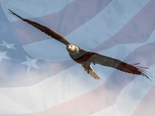American Flag With A Bald Eagl...