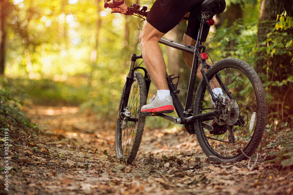 Fototapeta Muscular legs and mountain bike