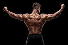 Muscular Man Showing Back Musc...