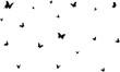 beautiful butterflies vectors with background decorative.
