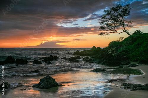 Fototapeta Maui Sunset obraz na płótnie